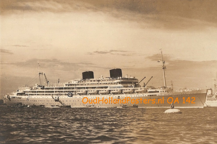 willem ruys sepia 3 2 OHP OA 142